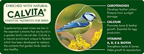 Peckish Garden Bird Seed Mix, 5 kg 2