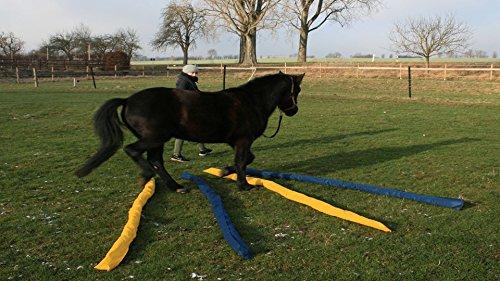 Longier-Hilfe für Pferde, blau & gelb, 4 Stk., 2,8m lang, Pferdeausbildung, Richtläufer, Bodenarbeitshindernis, Hindernis-Stangen -