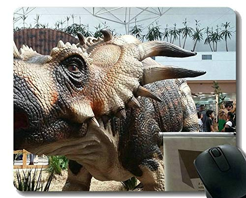 Mausunterlage Anti-Rutsch, Dinosaurier-fossile Replik-personalisierte Rechteck-Spiel-Mausunterlagen Elk Schuhe