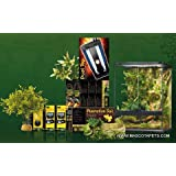 kit terrario Tropical 120litros exo-terra