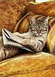 Avanti Karten - Humorkarte Geburtstagskarte Katze mit Zeitung 94-0176