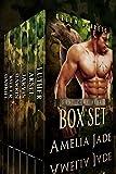 Base Camp Bears: The Box Set