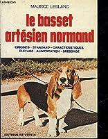 Le Basset Artésien Normand : Origines, standard, caractéristiques, élevage, alimentation, dressage