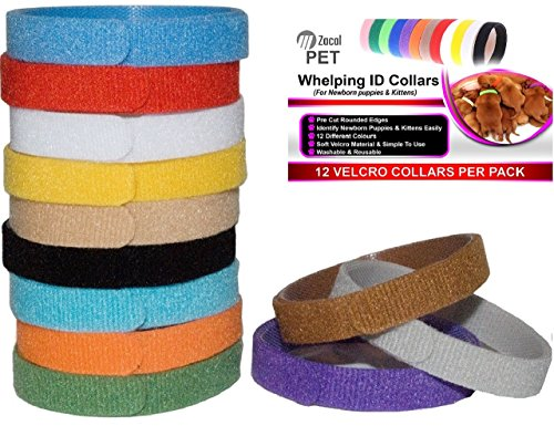 Whelping ID Collars for Newborn Puppies and Kittens - Easy to Identify and Monitor Each - Double Sided Fabric, Making… 1