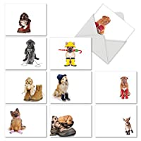 M2980OCB These Boots are Made for Puppies: 10 Assorted Blank All-Occasion Note Cards Featuring Adorable Puppies Sitting Inside Various Shoes and Boots, w/White Envelopes.