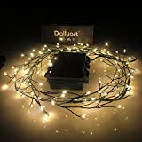 Dailyart 120 LEDs Copper Wire Lights Fairy Lights Starry Lights Garden Lights for Homes, Wedding, Christmas Party, Battery-Powered, Waterproof IP44[Energy Class A++]