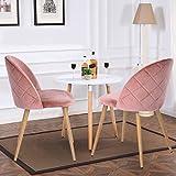 Esszimmerstuhl Coavas samt weich Kissen Sitz und Rücken mit hölzernen Metallbeine Küche Stühle für Ess - und wohnzimmer Stühle Set von 2, Rosa - 6