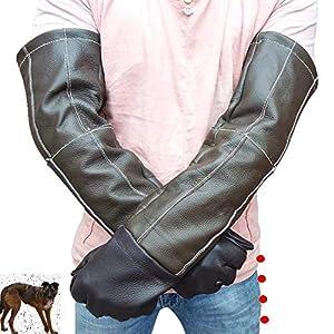 Liergou Manches Longues Gants de Protection pour Animaux Traitement des Animaux Gants Anti-morsures/égratignures Gants de Protection de la Faune pour Chat, Oiseau Serpent, Perroquet et lézard