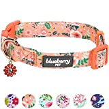 Blueberry Pet Frühlingsduft Inspiriertes Gartenbalsam Hundehalsband in Apricot, S, Hals 30cm-40cm, Verstellbare Halsbänder für Hunde