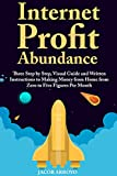 Internet Profit Abundance: Three Step by Step, Visual Guide and Written Instructions to Making Money from Home from Zero to Five Figures Per Month (English Edition)