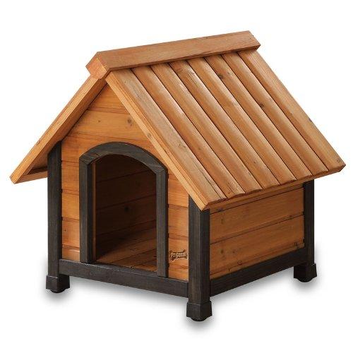 Perro de mascota Squeak ARF Frame Cámara, XS