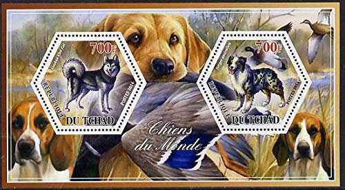 Chad 2014 Dogs #3 perf sheetlet two hexagonal-shaped values u/m SHAPED HEXAGON HEXAGONAL DOGS JANDRSTAMPS