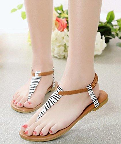 sandales femmes chaussures orteil clip mis les pieds sandales à bout ouvert Black
