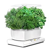 Miracle-Gro AeroGarden Harvest with Gourmet Herb Seed Pod Kit, White
