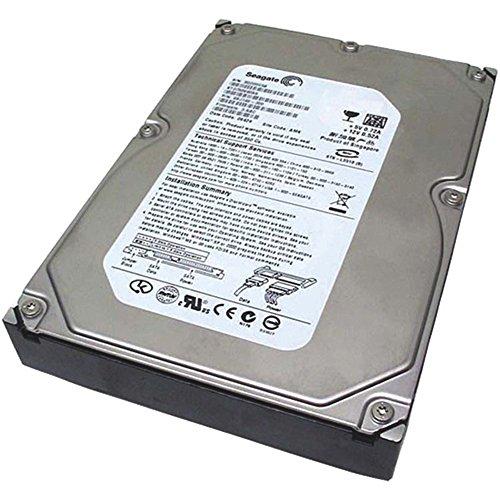 Puffer Ata 100 Festplatte - Seagate DB35,3 Series ST3300820ACE - Festplatte