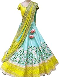 ShreeBalaji Women's silk Multi-Coloured Embroidary Anarkali lehnga/lehenga Choli (NJL-2010_Multi-Coloured,FreeSize)