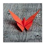 BANJADO Glas Magnettafel beschreibbar in verschiedenen Größen | Memoboard mit 4 Magneten | Glastafel mit Motiv Origami Schmetterling | Pinnwand aus Glas magnetisch, Glas Magnettafel:30x30cm