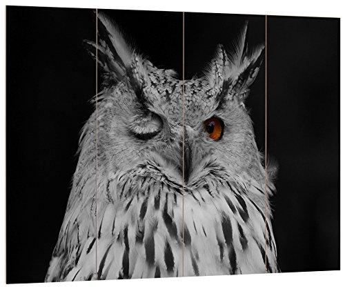 Pixxprint HBVs_4121_80x60 Dark zwinkernde Waldohreule MDF-Holzbild im Bretterlook Wanddekoration, bunt, 80 x 60 x 2 cm
