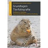 Grundlagen Tierfotografie: Profifotos in 3 Schritten. Faszinierende Bildideen und ihre Umsetzung
