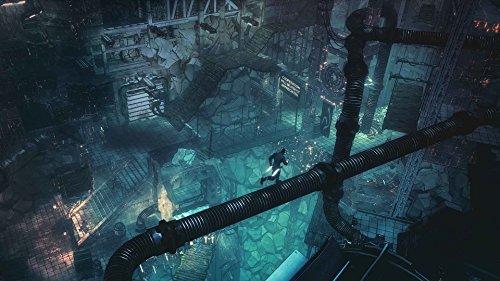 Seven: The Days Long Gone screenshot