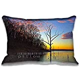 "Still Point Of A Turning World 20""x 30"" Home Decor Pillows Cushion Design Pillow Case Covers For Pillows(Twin Sides)Christmas Gift"