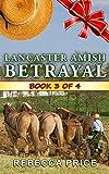 Lancaster Amish Betrayal (The Lancaster Amish Juggler Book 3)