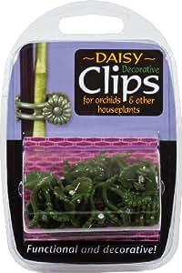Pinces pâquerettes en plastique décoratives pour plantes (boîte de12)