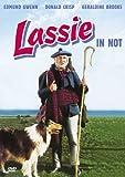 Lassie Not kostenlos online stream