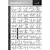 NewMe Fitness Dumbbell Exercise Poster Laminated 20X30
