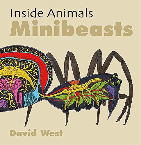 Minibeasts (Inside Animals, Band 5)