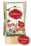 Marienkäfer-Glück: Saatvogel Wildblumen