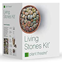 Plant Theatre Living Stones Kit - Lithops Gift Seed Kit - Everything You Need in one Box to Grow These Unusual Plant Varieties from Seed
