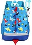 Best Preschool Backpacks - VISMIINTREND Kid Toddler Backpack/School Bag Dragon Dinosaur Review