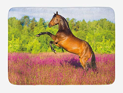 Möbel Turtle Bay (NasNew Doormats Horse Bath Mat, Strong Bay Horse Rearing Up in Blossoming Rural Summer Field Trees, Plush Bathroom Decor Mat with Non Slip Backing, 23.6 W X 15.7 W Inches, Green Hot Pink and Brown)