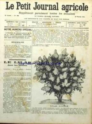 PETIT JOURNAL AGRICOLE [No 894] du 16/02/1913 - LE LILAS DANS LES JARDINS PAR GROSDEMANGE - LA POMME DE TERRE PAR MESSIER - LES REGISTRES DES SYNDICATS D'ELEVAGE PAR GILLIO - DROIT RURAL - ETAT DU MARCHE.