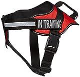 Dogline Alpha Nylon Vest Service Harness Brustplatte mit Abnehmbarem und in Training Klett Patches, X-Large, Brust Größe 36bis 116,8° cm, Rot
