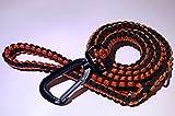 Paracord Hundeleine mit starker Karabiner Clip und D Ring
