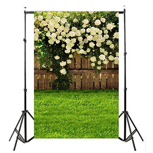 Sannysis Pro Fondo fotográfico 90*150cm, Plegable Telón de Fondo de bebé prop para fotografía estudio Profesional para Vídeo y Televisión, Verde, Incluye únicamente el Fondo (fotografía accesorios F)