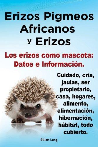 Erizos Pigmeos Africanos y Erizos. Los Erizos Como Mascota: Datos e Informacion.