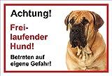 Schild Warnschild - Achtung freilaufender Hund – Betreten auf eigene Gefahr - Hund Hundeschild 30x20cm Hartschaum Aluverbund -S31V