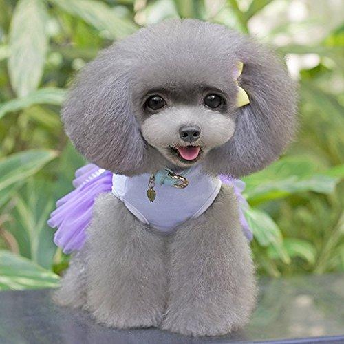Nalmatoionme Violet Petit Animal Petit Chiot en dentelle Jupe Chien Robe de princesse Accessoires Cadeau Taille M