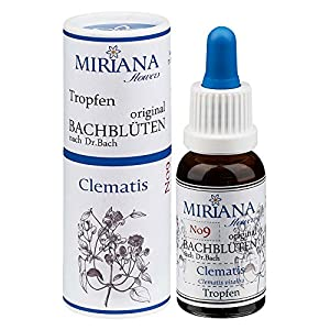 MirianaFlowers Clematis 20ml Bachblüten Stockbottle