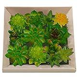 Funpa Succulentes Artificielles, 12 PcsArtificielle Plante Succulente Fleur Plante Vert Mini Succulentes DIY Pour La Decoration De Mariage Maison De Jardin(vase non inclus)