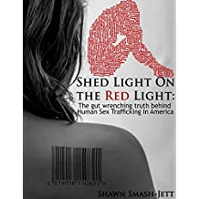 Shed Light on the Red Light: The gut wrenching truth behind Human Sex Trafficking In America (English Edition)