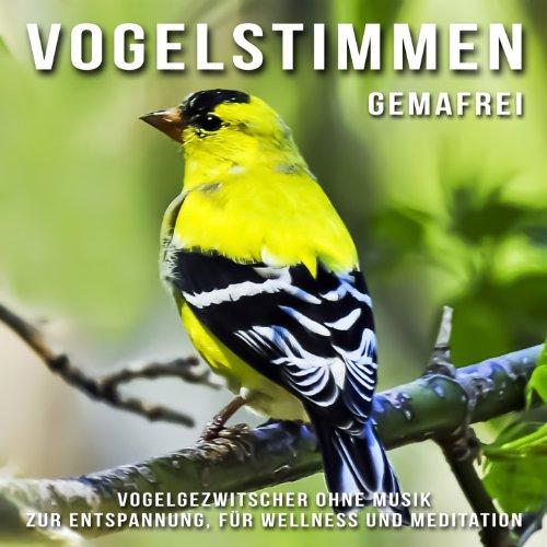 Vogelstimmen für Wellness, zum...