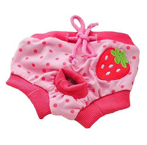 Braga sanitaria de algodón Da.Wa para menstruación de perras, 1 unidad