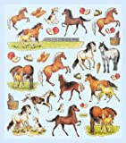 Hobby Design Sticker * Pferd - Pferde - Fohlen * Aufkleber 3452315