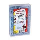 Fischer Meister-Box SX+Schrauben