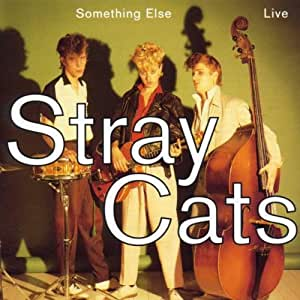 Chaussures Stray Cats