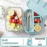YWXFX Baispo Lunch Box Contenitore da Pranzo per Bambini in Vetro per microonde Contenitore e Scomparto per Alimenti Scuola di stoccaggio Cucina a Prova di perdite Riscaldamento @ Blu 1 Set Mille ml
